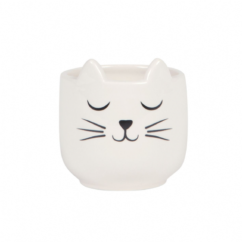 White Cats Whiskers Mini Planter - Cat Design Plant and succulent holder